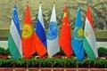 Страны ШОС обсуждают создание Энергетического клуба